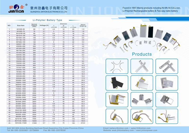 Li-Polymer.jpg