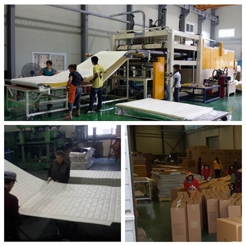 工厂图片.png